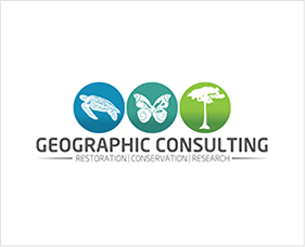 Geographic Consulting